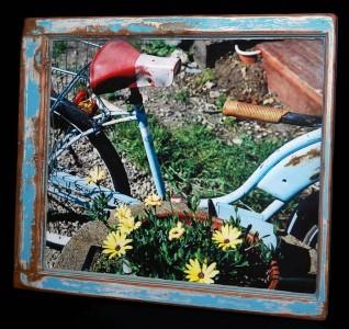 Daisy Bike (1)