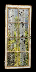 Aspen Trees (1) - Click Image