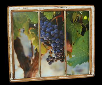 Grapes (1) - Click Image